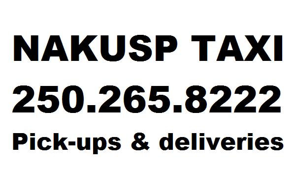 nakusp-taxi-logo.png